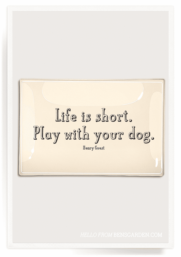 """Life Is Short, Play"" 4x9 Decoupage Tray"
