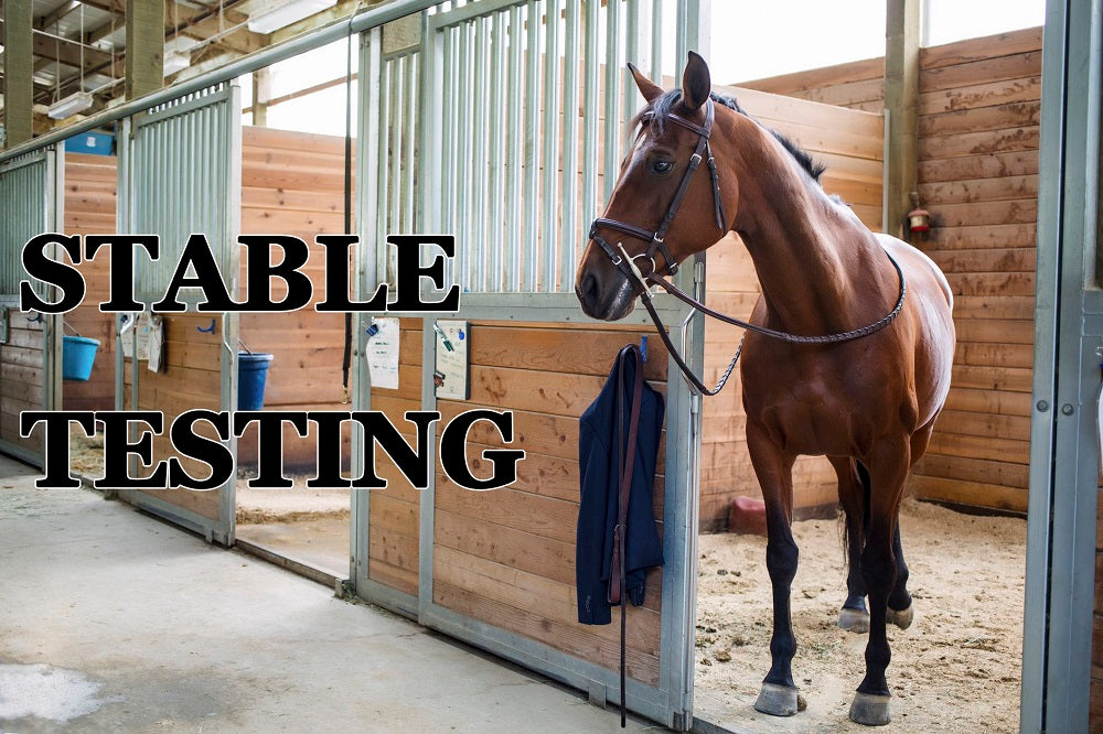FROM THE ARCHIVES: STABLE TESTING
