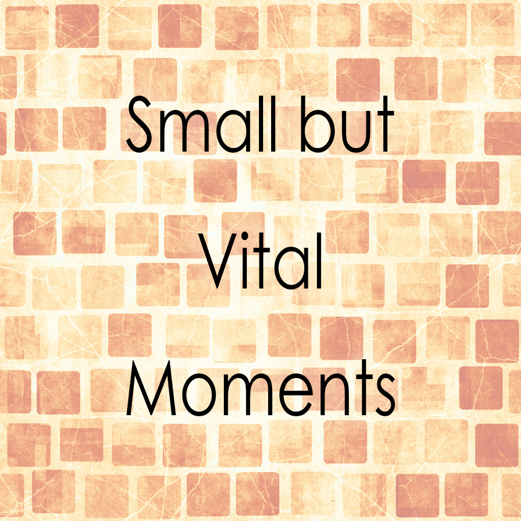 SMALL BUT VITAL MOMENTS (by Tom Russell)