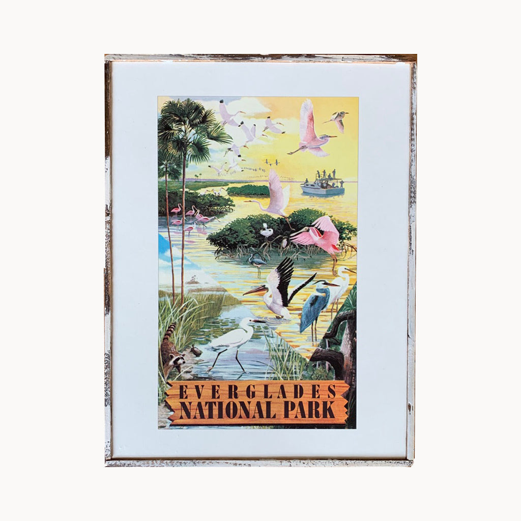 Everglades National Park Framed Print