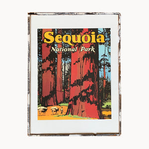 Sequoia National Park Framed Print