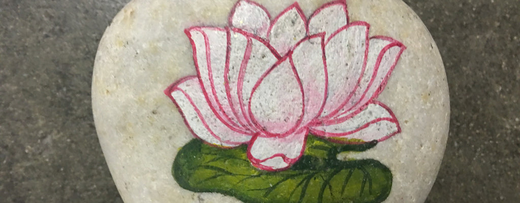 Lotus On A Rock