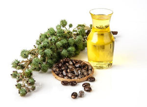Magical Benefits of Castor Oil