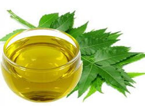 Ever Heard of Neem Oil?