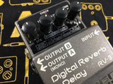 Boss RV-3 Reverb/Delay