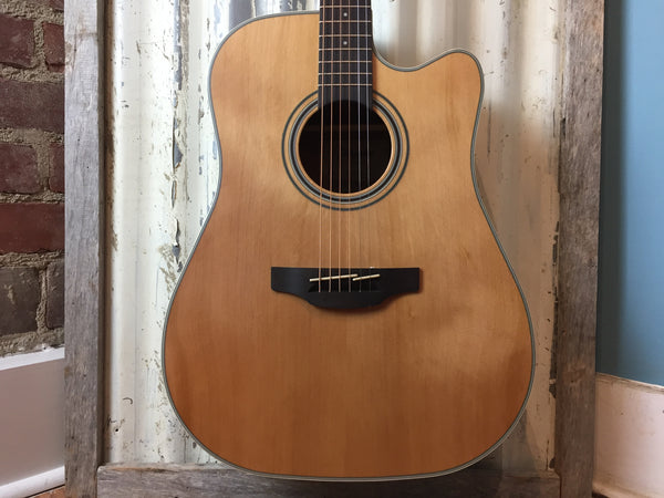 Takamine GD20CE Acoustic/Electric