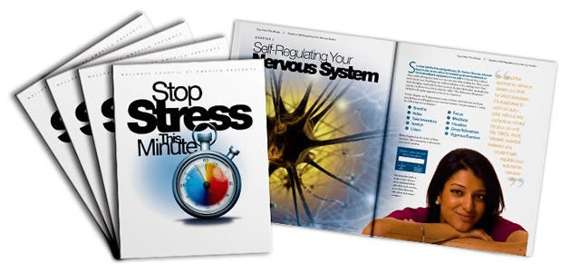 Stop Stress This Minute Book
