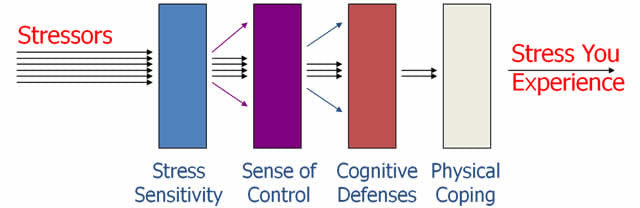 How Stress Sensitivity Works