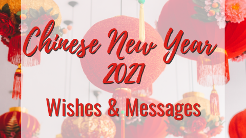 Chinese New Year Wishes & Messages🏮