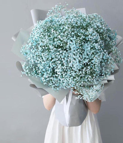 Giant Majestic Tiffany Blue Baby Breath's Bouquet