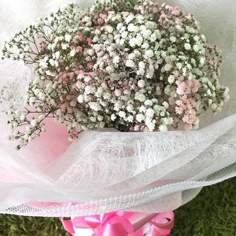 Mixed Pink & White Baby's Breath