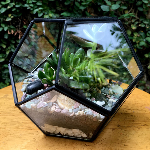 Geode Design Medium Copper Frame Terrarium - Black