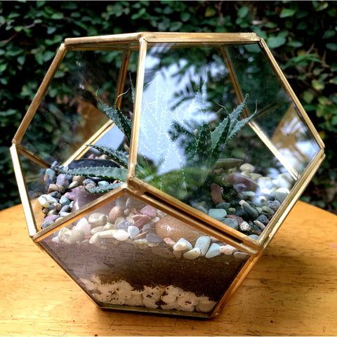 Geode Design Medium Copper Frame Terrarium - Gold