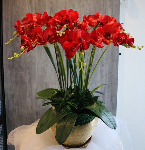 Artificial Red Orchid Flowers (6 Stalks)