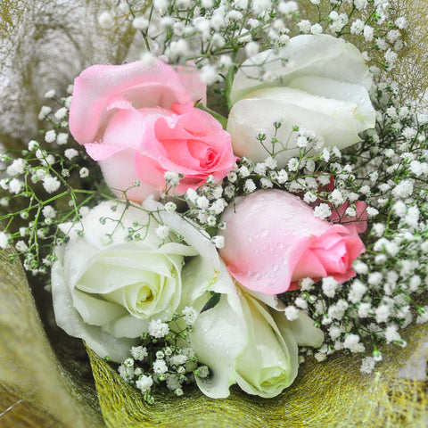Angelica🌷: Mixed Pink & White Roses with Baby's Breath