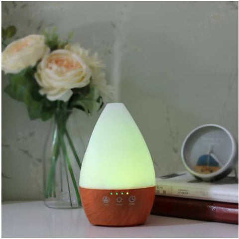 Aromatherapy Cool Mist Diffuser with Essential Oil