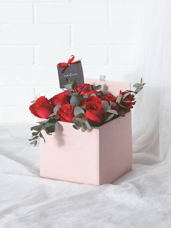 (Valentine's Day 2020) Minimalist Red Rose Pink SquareBox
