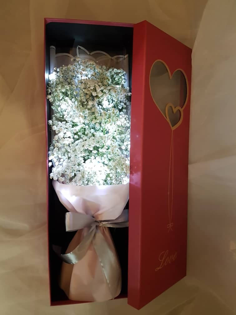 Baby Box (Valentine's Day 2019)