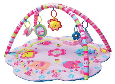 Pinky Musical Playgym Gift Set (Nationwide Delivery)