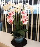 Artificial White Orchid in Vase