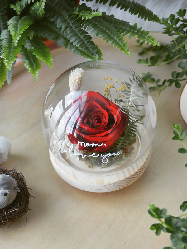 Sanctuary Preserved Red Rose Globe
