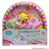 Playgym Set (Klang Valley Delivery Only)