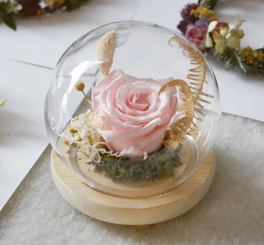 (Mother's Day Special) Sanctuary Preserved Pink Rose Globe