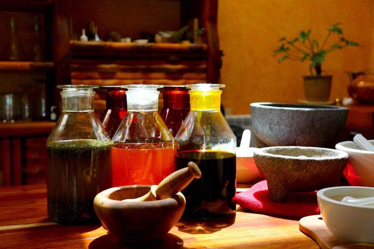 an introduction to anthroposophical medicine extending the art of healing