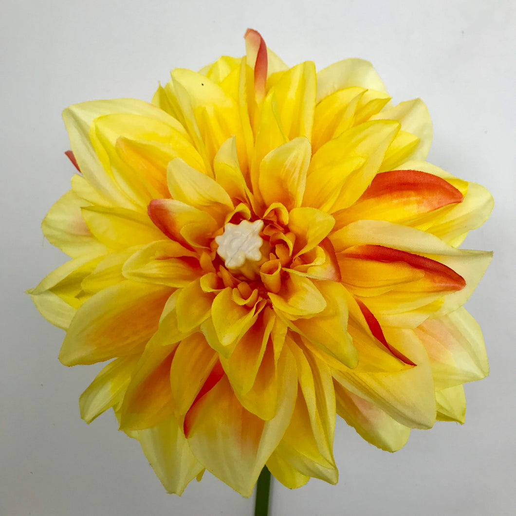 LED Yellow Dahlia