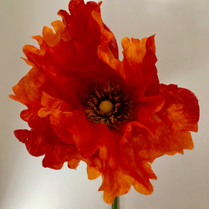 LED Orange Poppy