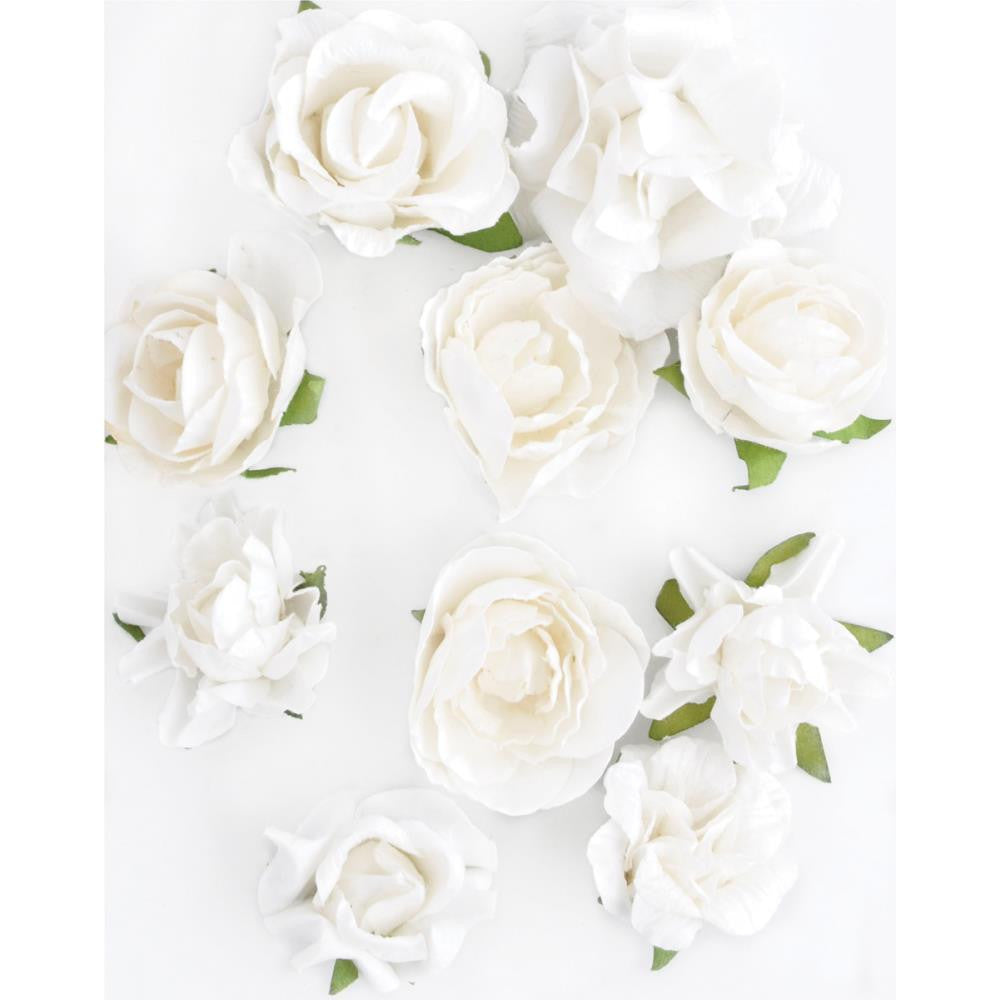 49 and Market Mulberry Paper White Roses, Flowers