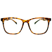 One Pair of Southern Seas Blackpool Bifocal Reading Glasses Readers