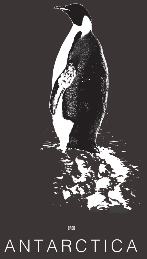 Male Penguin T-shirt