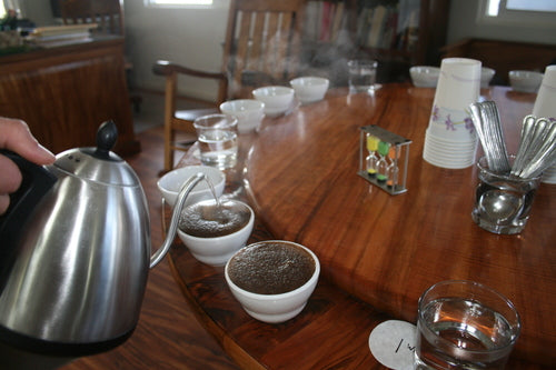 Cupping Coffee at Daylight Mind