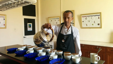 Tadesse preparing a cupping