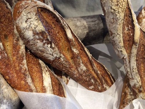 Fresh Baked Baguettes at Daylight Mind