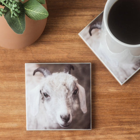 Goat Coaster Set of 4
