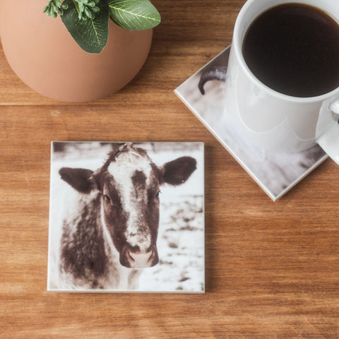 Cow Coaster Set of 4