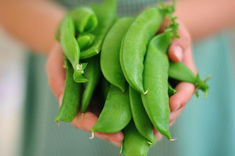 New Study Says Beans and Peas Are More Filling Than Meat-Based Meals