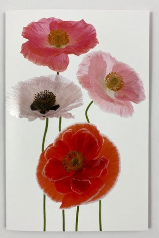 Modern Living Card - Poppies