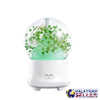 idrop Artificial Preserved Fresh Flower Aroma Diffuser Ultrasonic Air Humidifier Home Decor