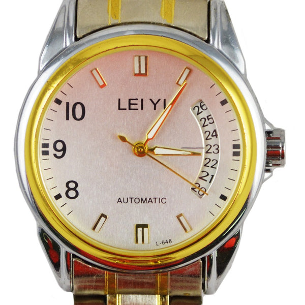 LEIYI Luxury Men Brand Automatic's Mechanical Watch SKeleton Stainless Steel Transparent Back