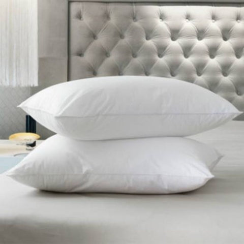 Set Of 2 Polyester Pillow