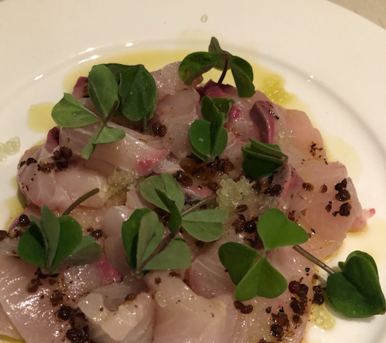 Native eating: Kingfish Crudo with Finger Lime