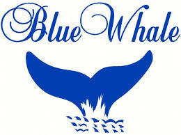 Blue Whale Uniforms Logo
