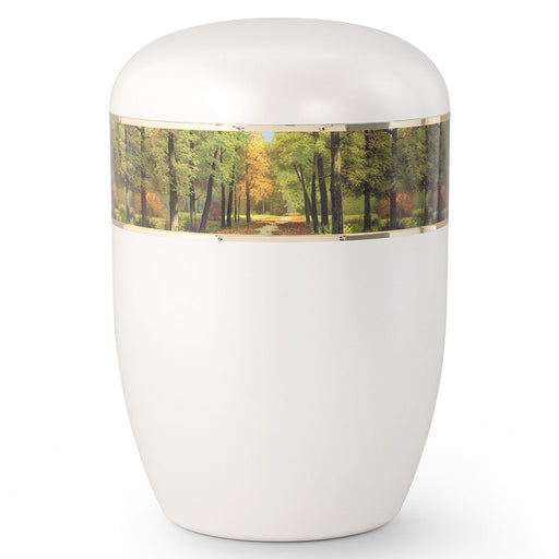 Biodegradable Series Forest Path 210 cu in Cremation Urn-Cremation Urns-Infinity Urns-Afterlife Essentials