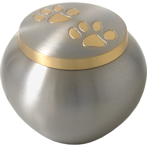 Golden Pawprints Metal Grey Dog Cremation Urns - Afterlife Essentials