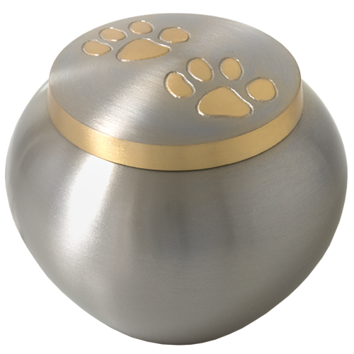 Cat Cremation Urns Golden Pawprints Metal Grey - Afterlife Essentials
