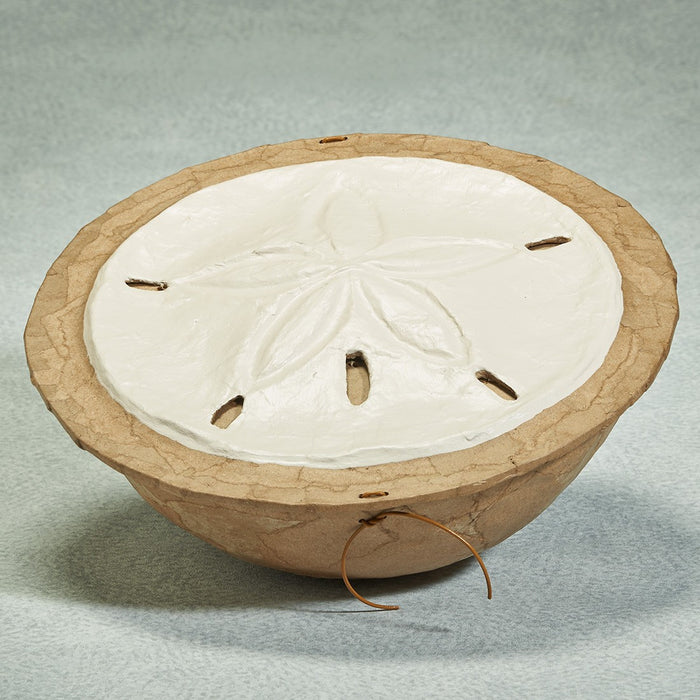 Water Series Sand Dollar Biodegradable 260 cu in Cremation Urn-Cremation Urns-Infinity Urns-Afterlife Essentials