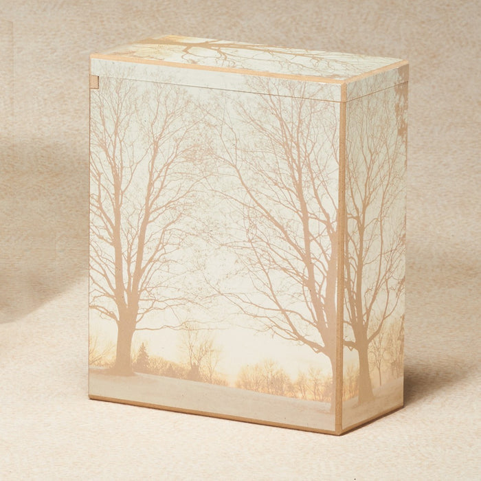 Winters Morning Scattering Box 195 cu in Cremation Urn-Cremation Urns-Infinity Urns-Afterlife Essentials